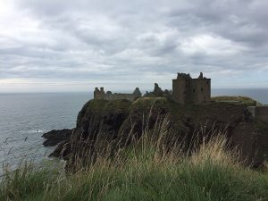 photograph of a ruined castle on a cliff overlooking the sea with tall grass in the foreground