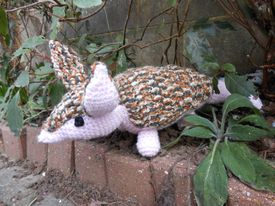 Angus the crochet armadillo sitting in his garden.