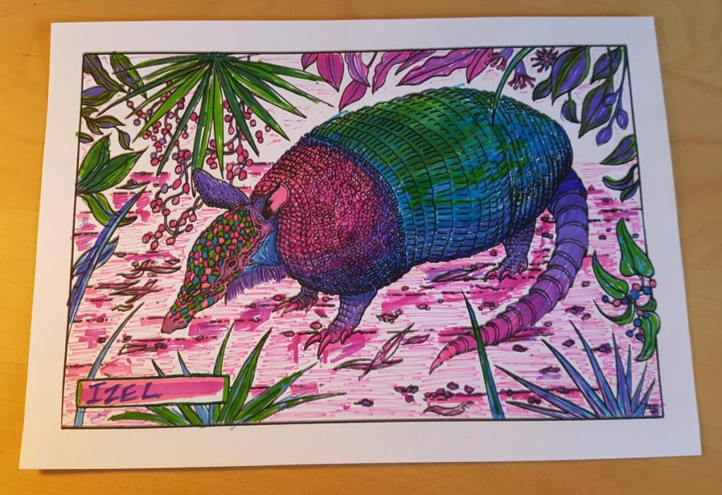 """Colouring page of an armadillo looking to the left in the middle of foliage. The colouring is done in pinks, purples, greens and blues. The nametag on the left says """"IZEL""""."""