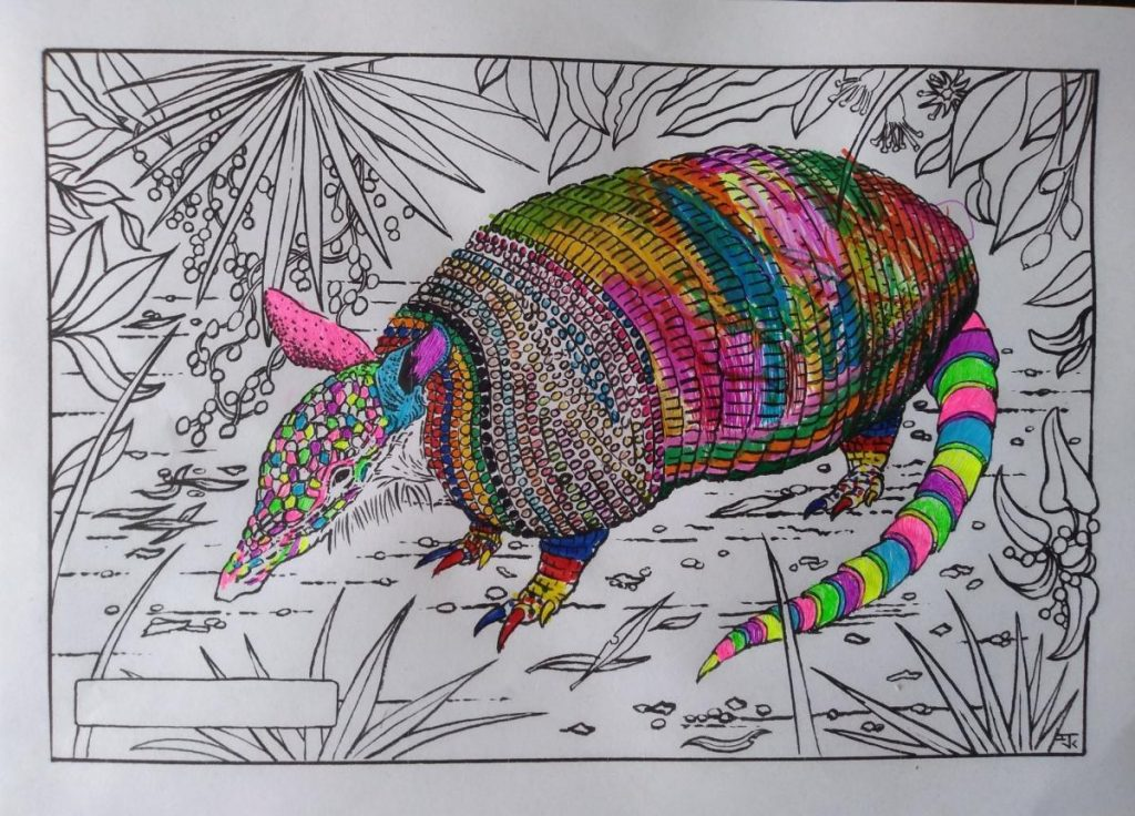 Colouring page of an armadillo in the middle of foliage. The head and tail are coloured in bright neon colours, the body is a bit more muted.