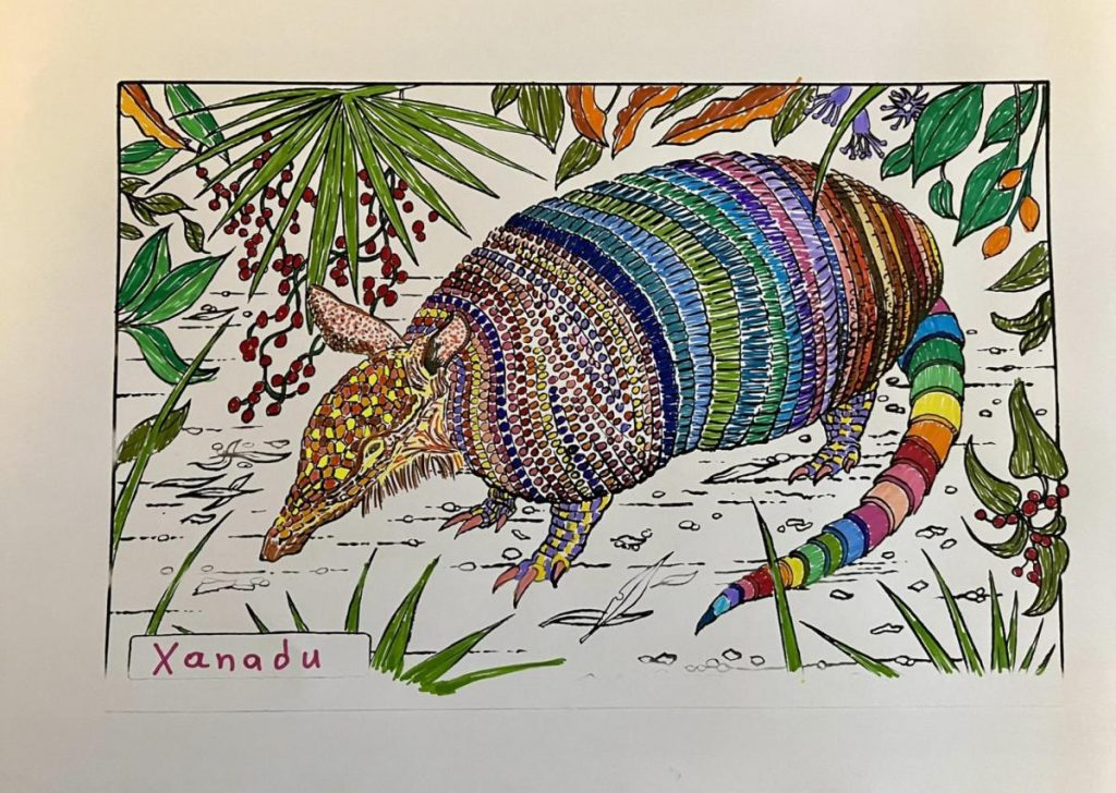"""Colouring page of an armadillo in the middle of foliage. The head armour in mottled browns and yellows, the body armour in stripes of mostly muted coulours, and the tail in rainbow colours. The nametag on the lower left says """"Xanadu""""."""