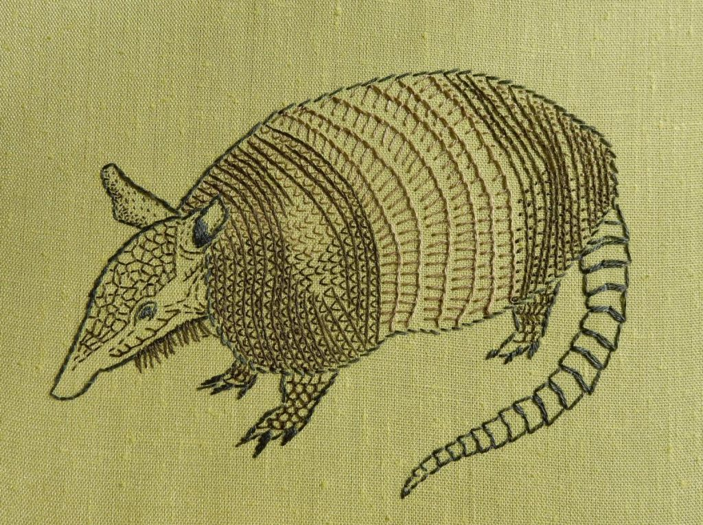 An armadillo looking to the left, embroidered in browns and greys on a light green fabric.
