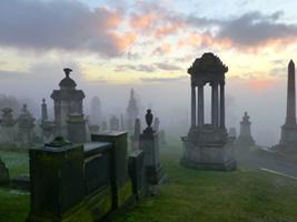 misty sunshine over southern necropolis